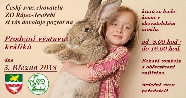 Výstava Rájec-Jestřebí, králíků
